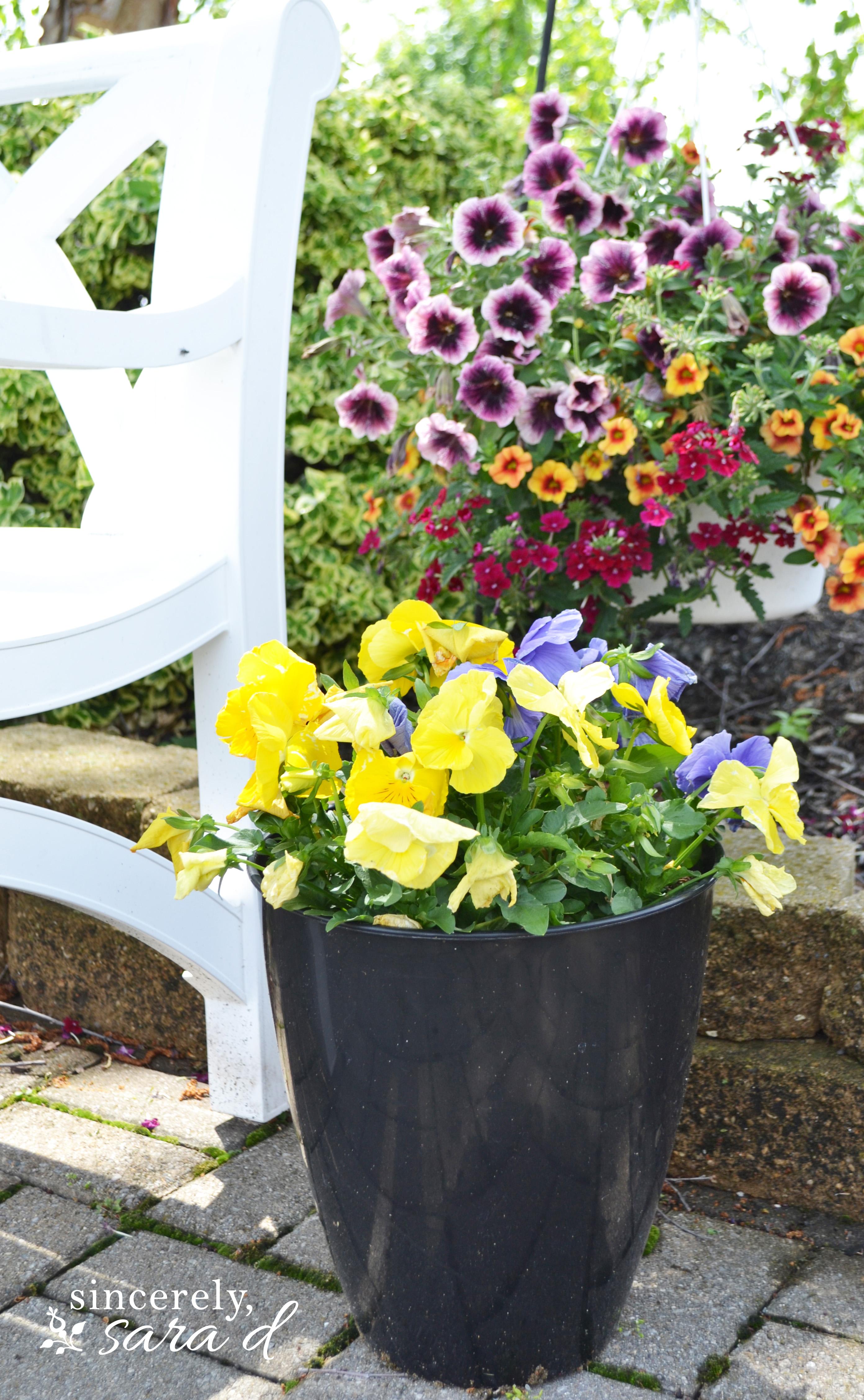 Inexpensive Flower Pot Tips