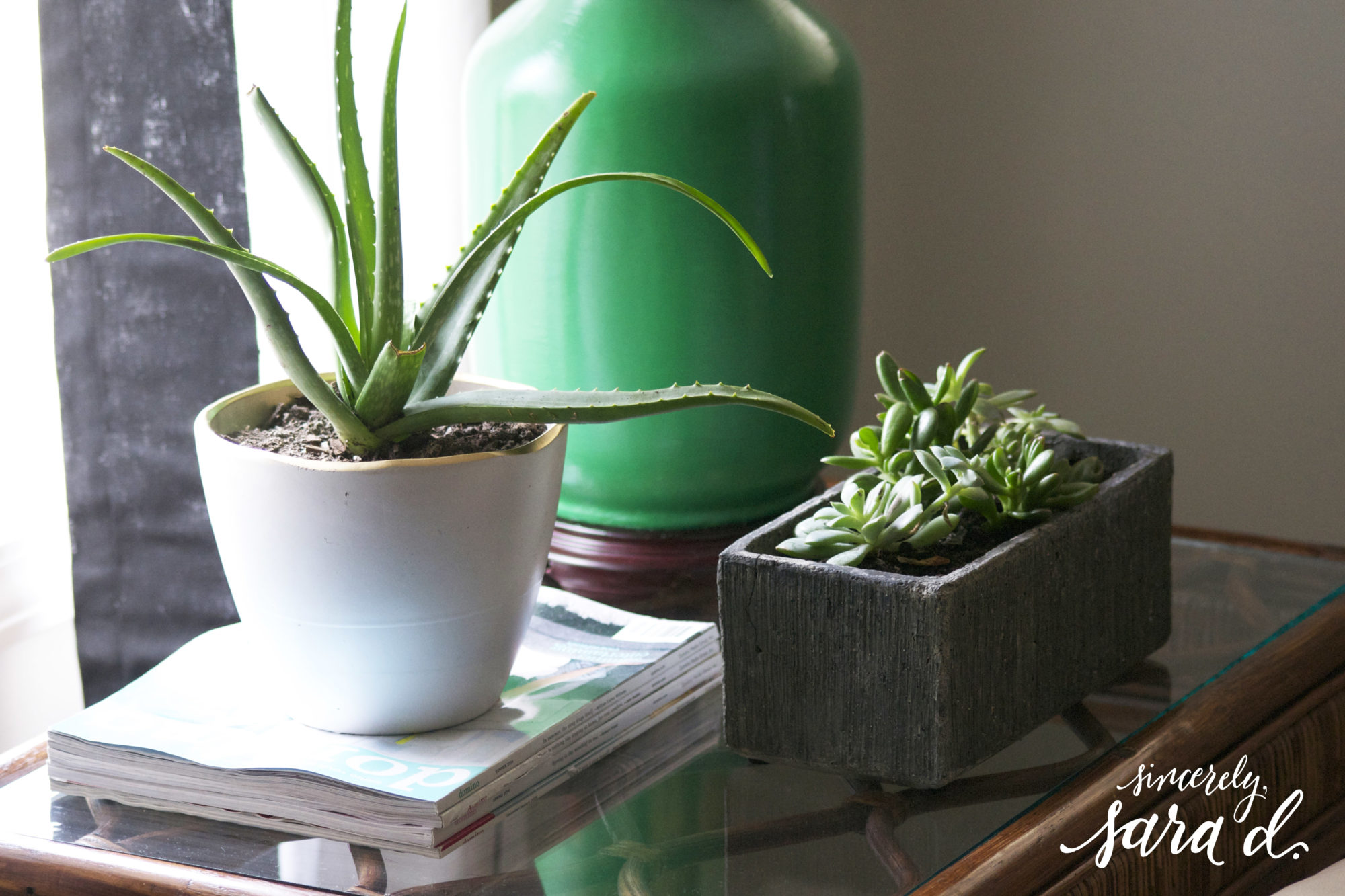 Using plants for decor