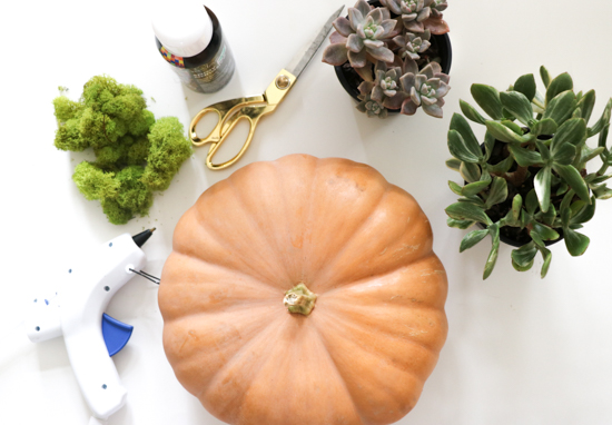 diy-pumpkin-centerpieces