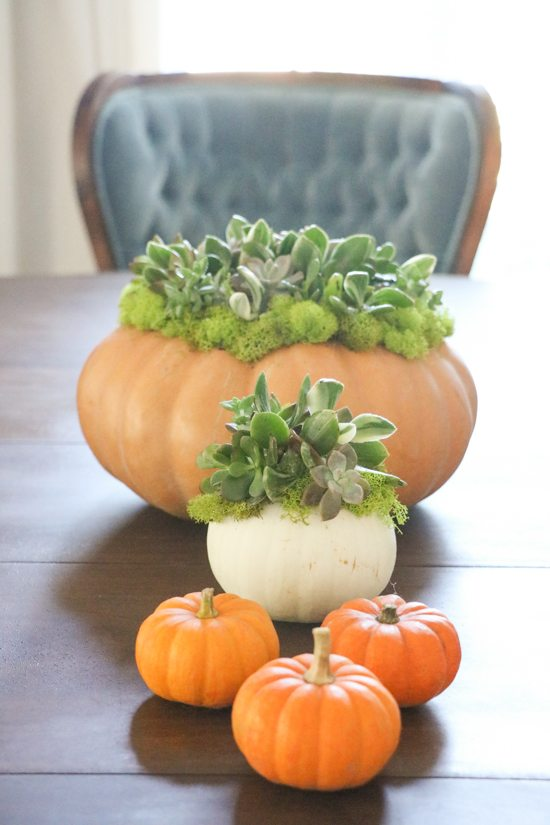 Pretty Fall Pumpkin Centerpieces