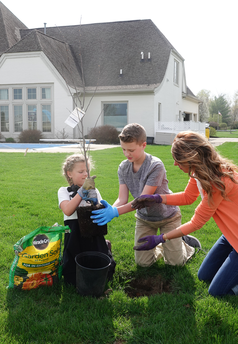 Ideas for Celebrating Earth Day