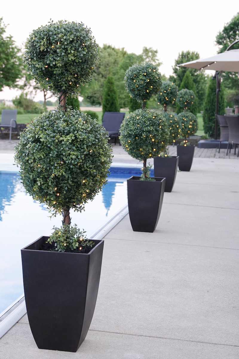 Outdoor Topiaries